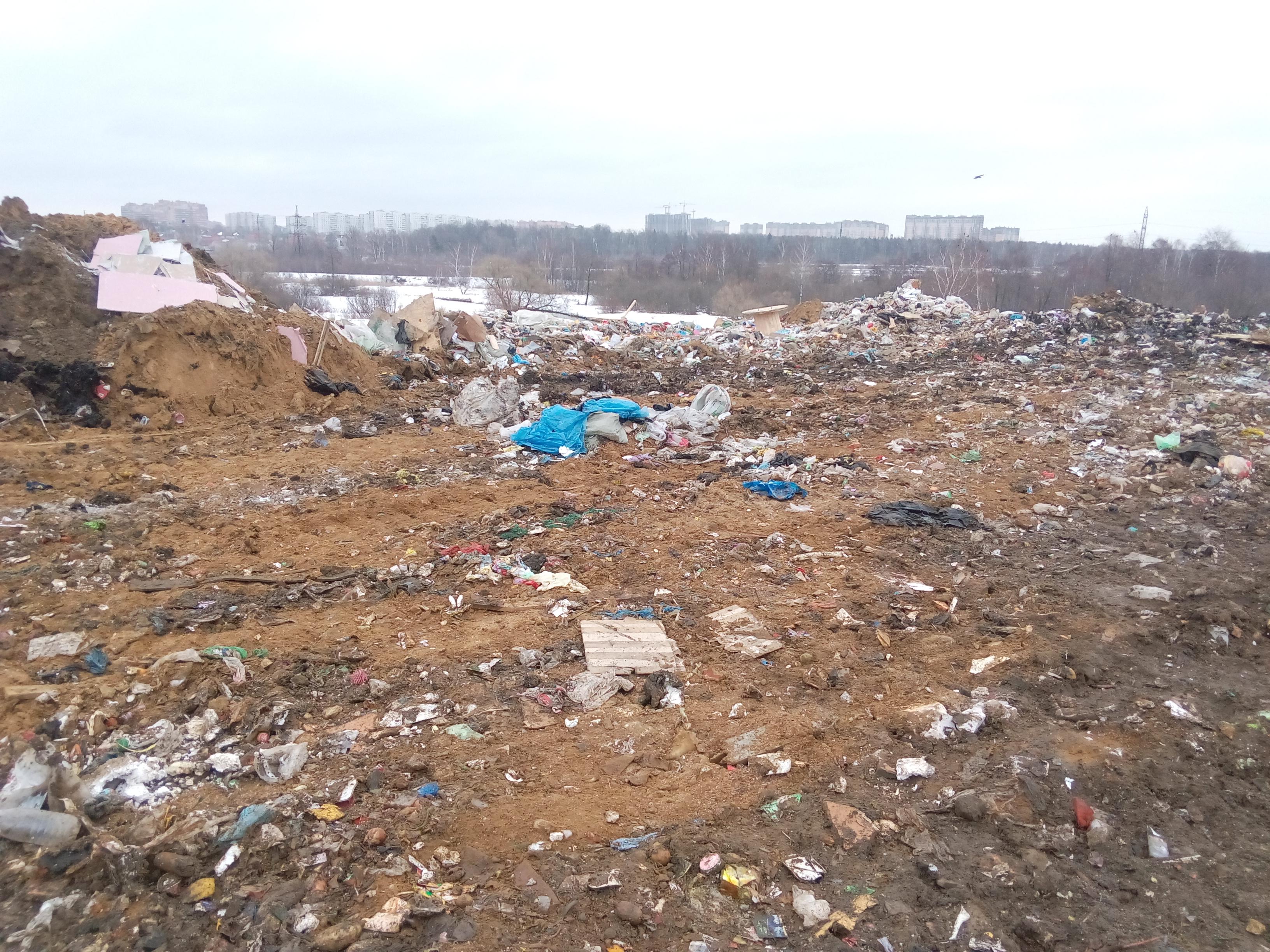 фото люберецкого мусорного полигона завершили все
